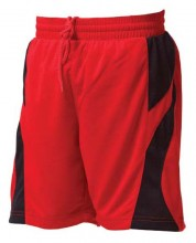 Winning Spirit Slamdunk Shorts SS23